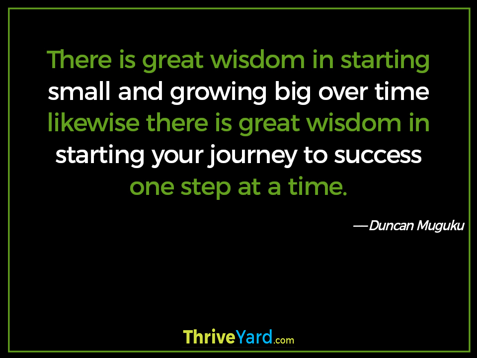 There is great wisdom in starting small and growing big over time likewise there is great wisdom in starting your journey to success one step at a time -Duncan Muguku_ThriveYard