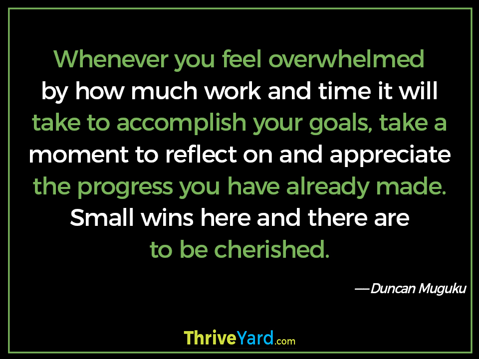 Whenever you feel overwhelmed by how much work and time it will take to accomplish your goals, take a moment to reflect on and appreciate the progress you have already made. Small wins here and there are to be cherished-Duncan Muguku_ThriveYard