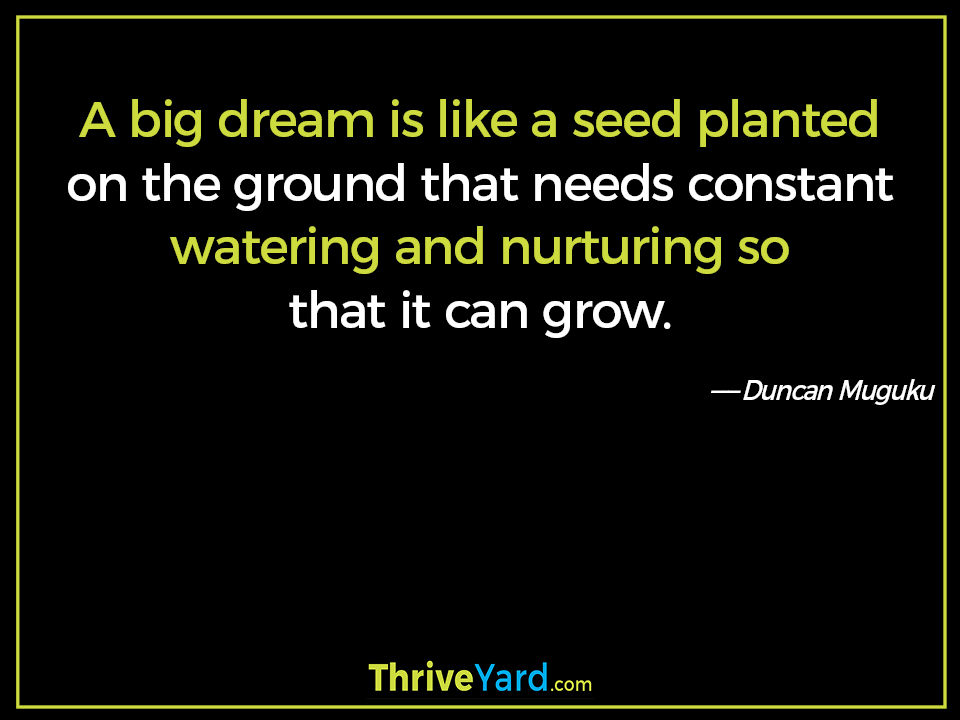 A big dream is like a seed planted on the ground that needs constant watering and nurturing so that it can grow. ― Duncan Muguku
